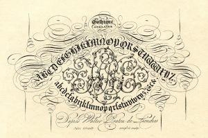 Type-Calligraphy-GraphicsFairy